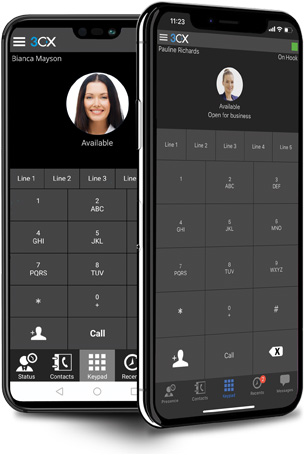 VoIP mobile